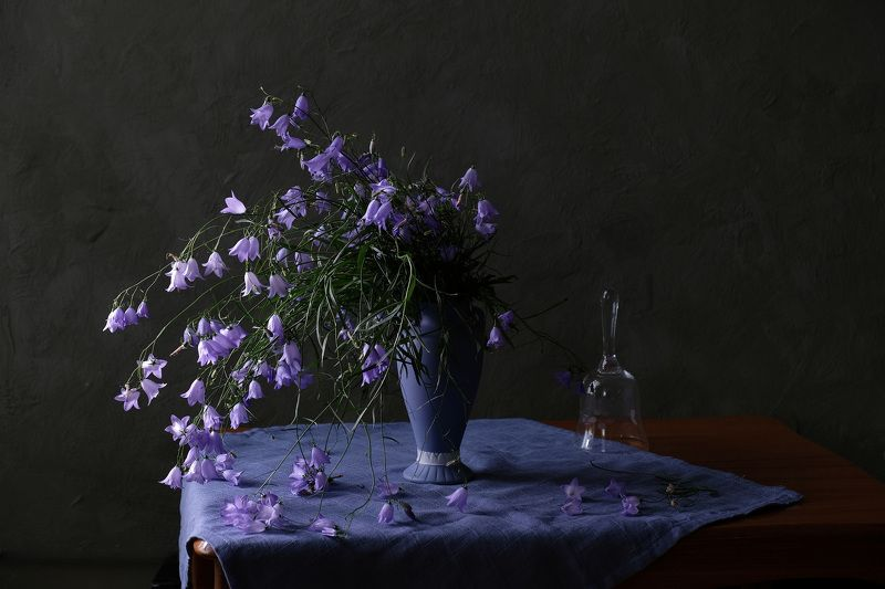 Still life, flowers, nature, blue, bellflowers, campanula, flora, колокольчики, Колокольчики мои...photo preview
