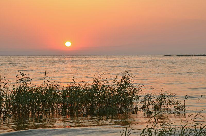 лето, июль, утро, рассвет, восход, река Жаркое утроphoto preview