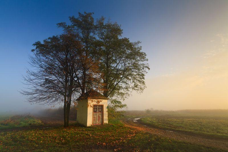 польша, осень, autumn, fall, season, mist, fog, poland, lesser poland, trees, village, golden hour,  tranquility, forrest, rural, countryside, chapel, outdoor, sunrise, morning, туман, heritage, ***photo preview