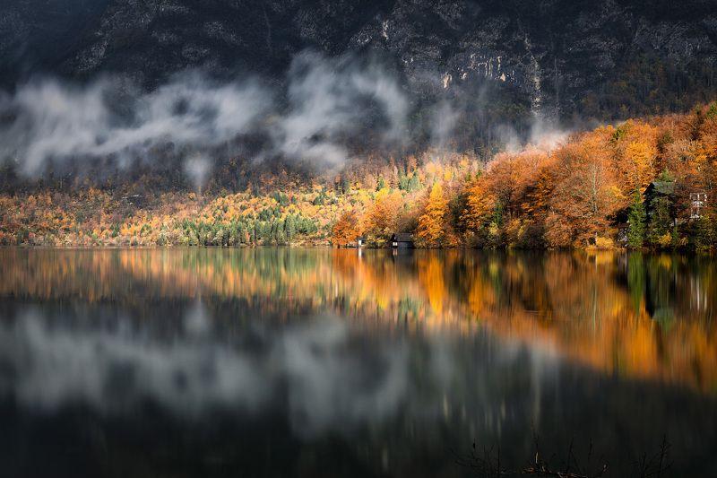 slovenia, lake, bohinj, autumn, mist, light, morning Бохиньский светphoto preview