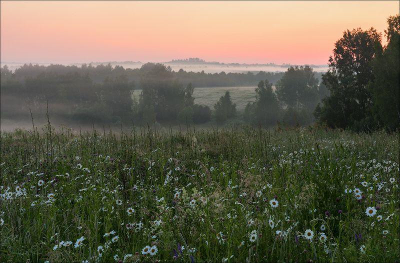 Туманное утро июняphoto preview