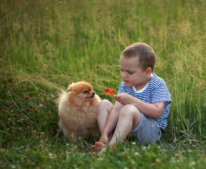 малыш, собачка, дружба,конфетка,лето, природа, kids, dog, friends, summer, nature Друзьяphoto preview