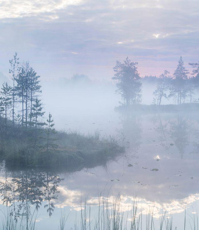 болото, кайф, рассвет ,север ,солнце, свет, закат, облака, отражение, фототур Утро на болотеphoto preview