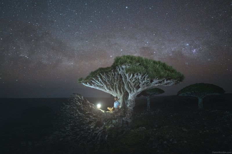 Socotra Socotraphoto preview