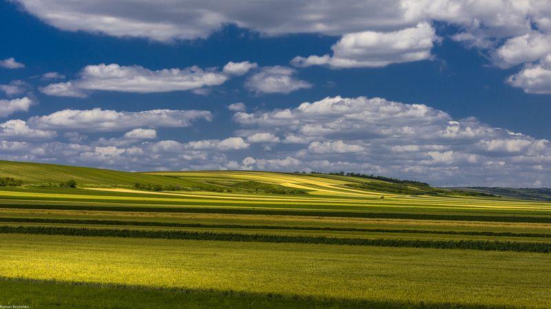 serbia, landscape, field, landscape photo, hills, sky Fields of Serbiaphoto preview