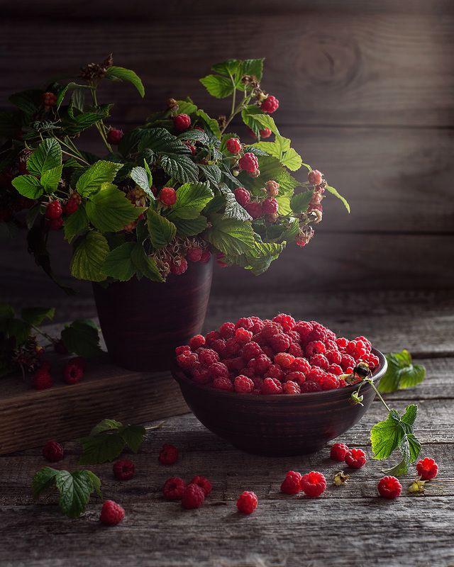натюрморт малина ягоды фотонатюрморт Ягода малинаphoto preview