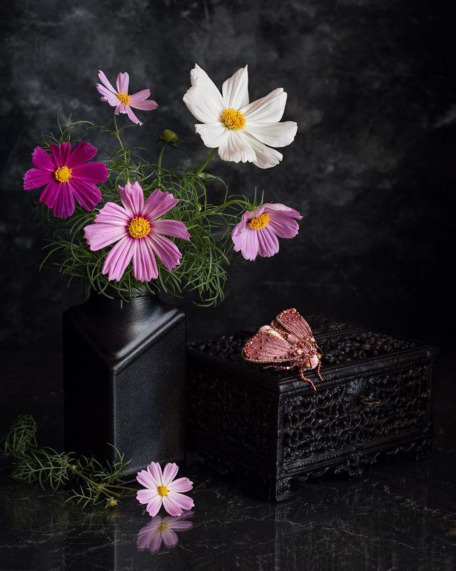 натюрморт букет космея фотонатюрморт цветы мотылёк брошь Мотылёкphoto preview