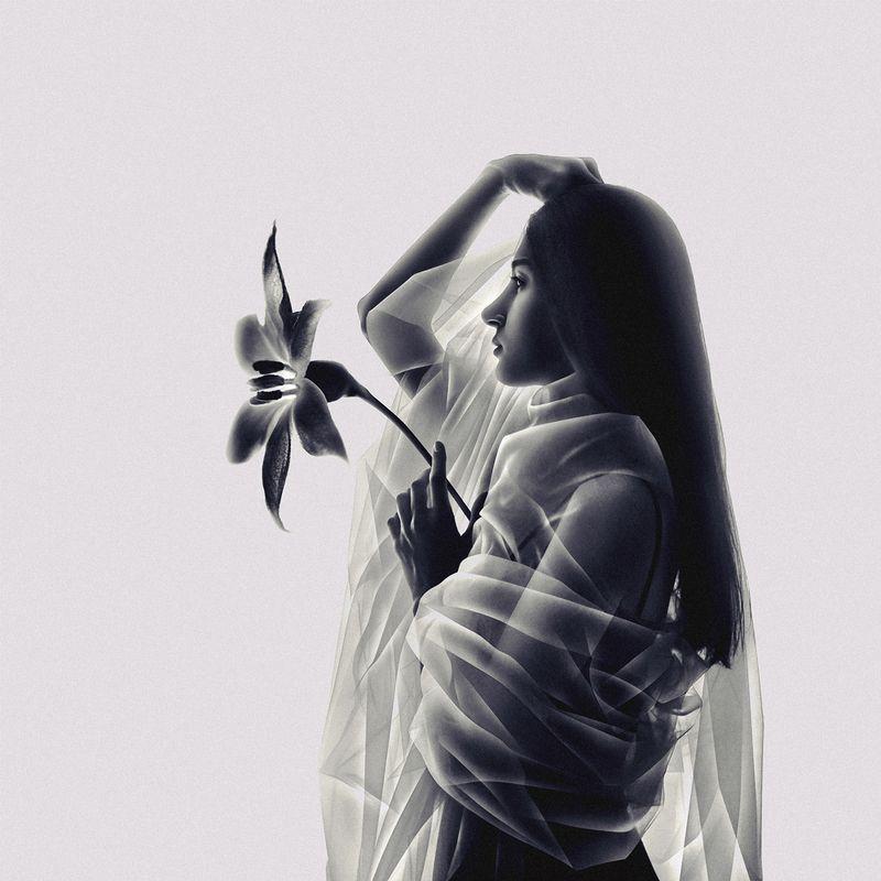 flower, silhouette, dark, light, portrait, veil, tulle, fine art, art, conceptual, contrast, creative edit, moon flower, surrealism, minimalism The Moon Flowerphoto preview