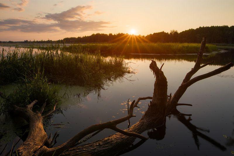 Июль. Закат с берегов реки Клеваphoto preview
