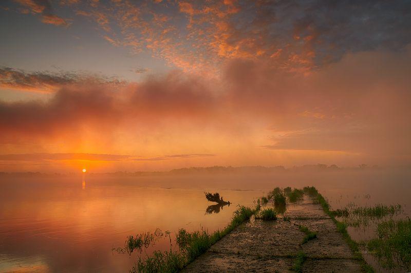 sunrise, landscape, clouds, tree, water, river, Poland Pastel sunrise.photo preview