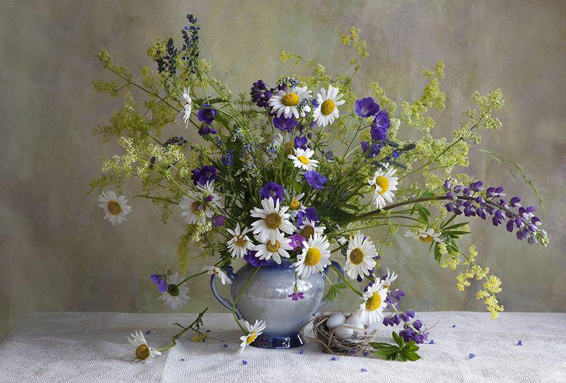Цветы полевыеphoto preview