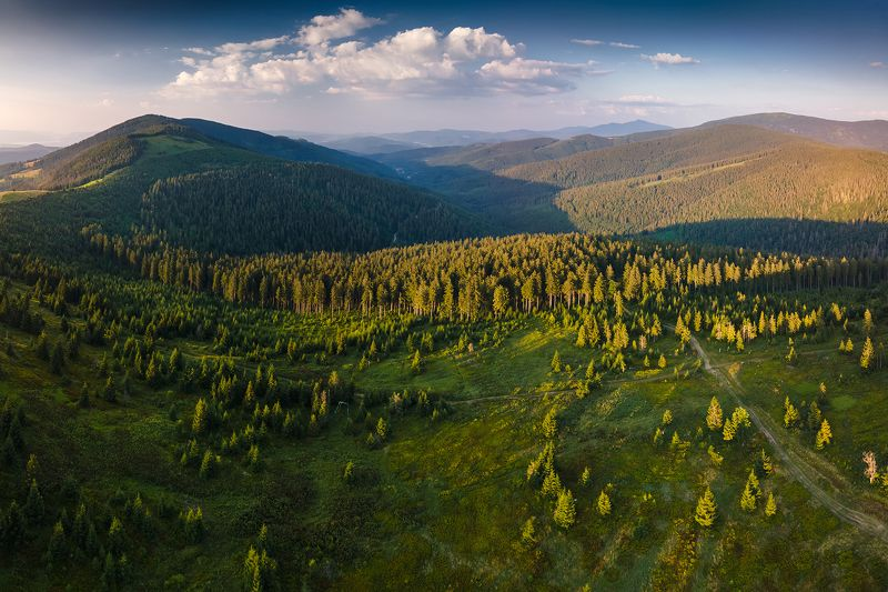 mountains, summer, poland, sunset Evening in the Mountainsphoto preview