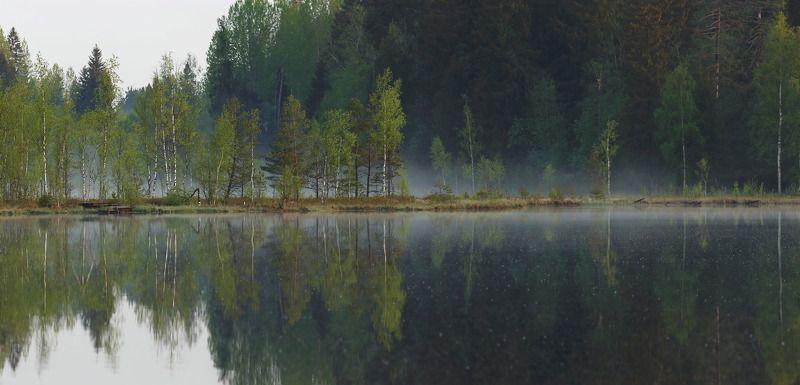 рассвет, туман, болото, озеро Утренняя медитацияphoto preview
