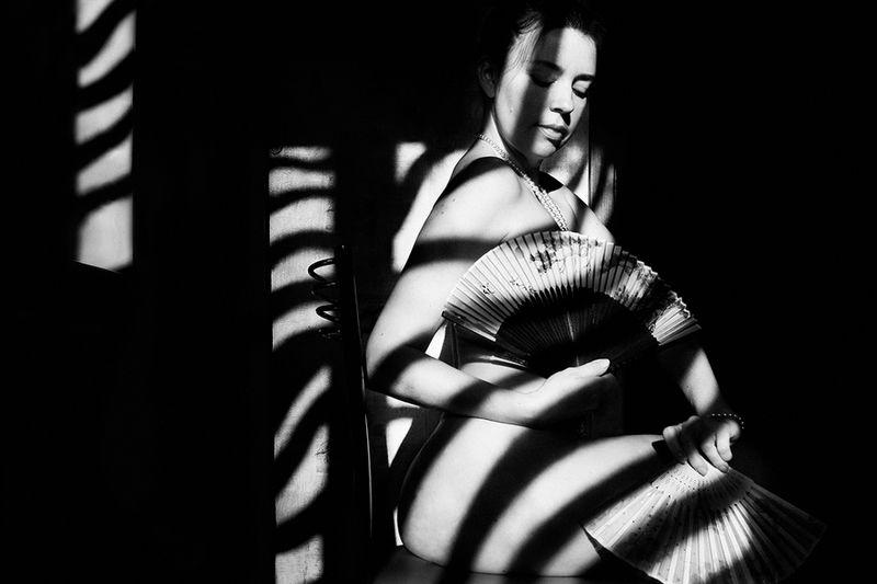 art nude, fine art nude, bw nude, estet mf, minimalism nude, shadows, zebra shadows, art shadows, zebra, zebra with a fan *photo preview