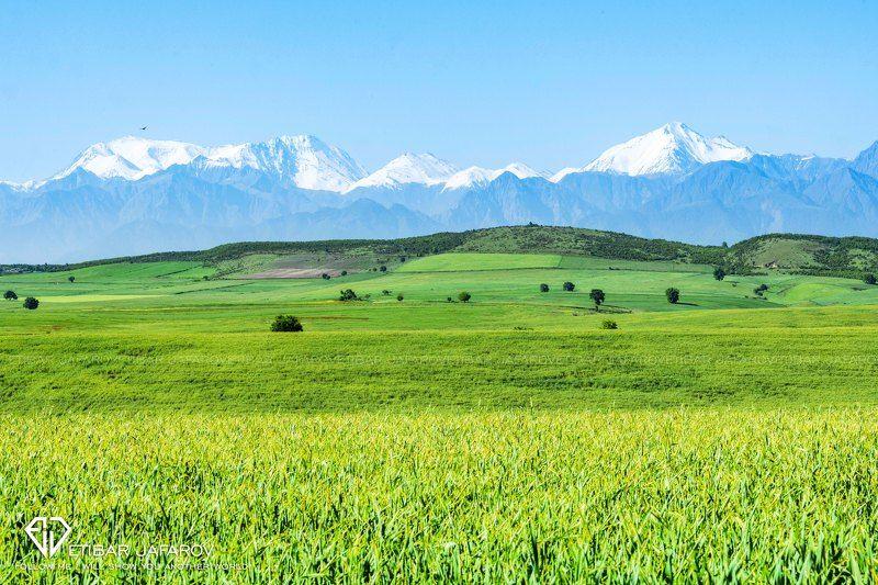 AZERBAIJANphoto preview