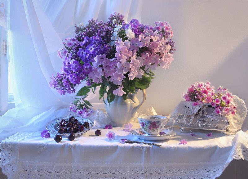 still life, натюрморт, цветы, фото натюрморт, флоксы, настроение, лето, июль, фарфор,шкатулка, черешня ...Летний день, жарой звенящий...photo preview