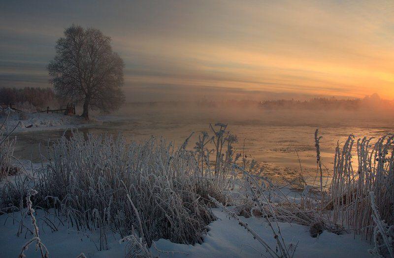 Морозный вечерphoto preview