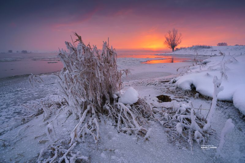 winter, landscape, river, snow, tree, ice, snow, sunrise, Poland, Kociewie Winter memories.photo preview