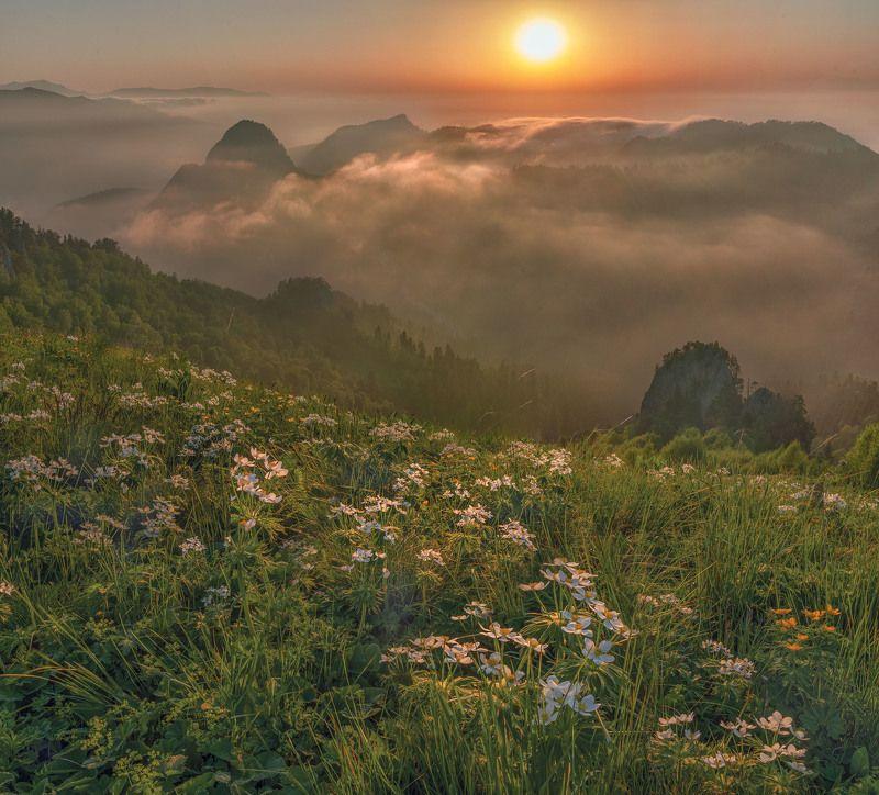 Фототуры с Владимиром Рябковым, #topnature #russpasibo #magic_shots #lovelyRussia #sunset_vision #exclusive_sky  #exclusive_shots #loves_russia2 #photoarena_nature #nature_sultans #nature_perfection #rsa_sky #rsa_sunset #photorussia #rsa_naturepics #sunse Западный Кавказphoto preview