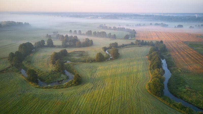 беларусь, июль, лето, поля, рассвет, река, туман, уса, утро Утро на Усе под занавес июляphoto preview
