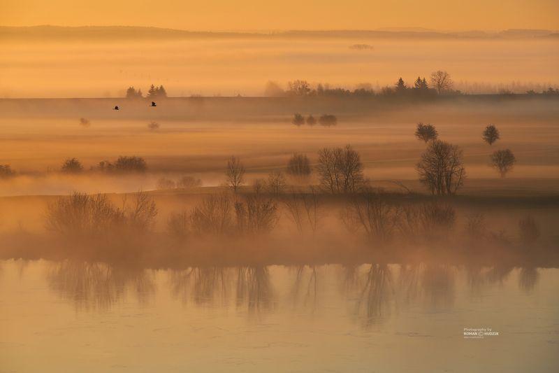 fog, river, landscape, sunrise, Poland, Kociewie, Foggy tales.photo preview