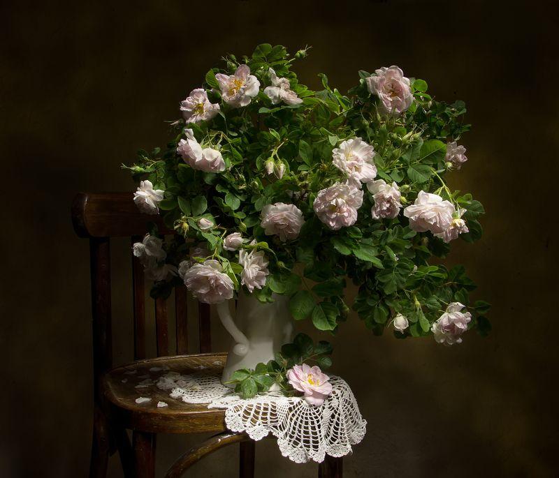 натюрморт, шиповник, розовый Розовая нежность...photo preview