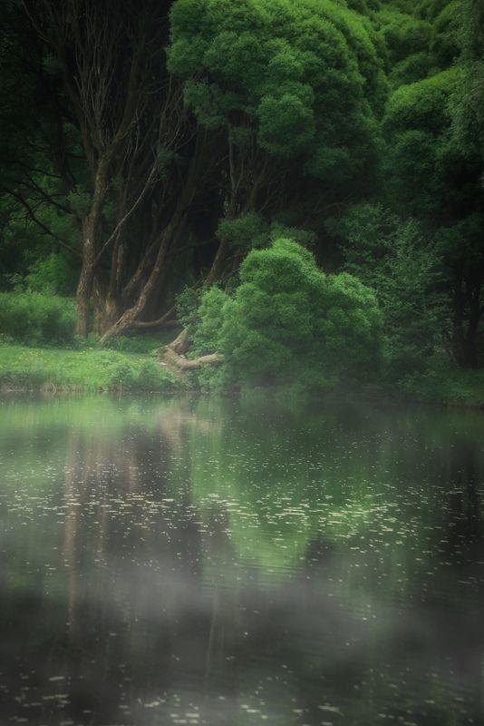 природа, nature, landscape, пейзаж ***photo preview