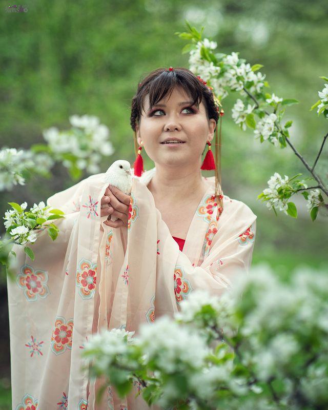 портрет, девушка, цветение, груша, Китай, голубь photo preview