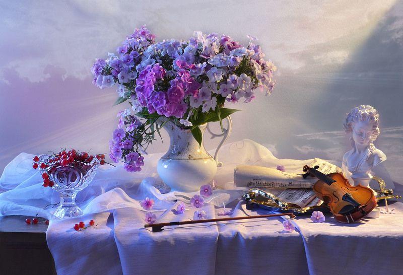 still life,цветы, фото натюрморт, флоксы, скрипка, ноты, красная смородина,статуэтка, натюрморт, настроение,август,  фарфор Тихая музыка сердца...photo preview