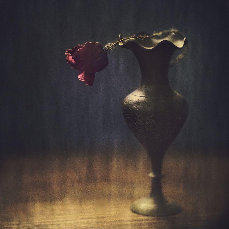 Танго разбитых сердецphoto preview