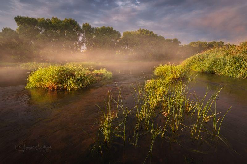 угра,утро,пейзаж,рассвет,лето,туман Доброе утро...photo preview
