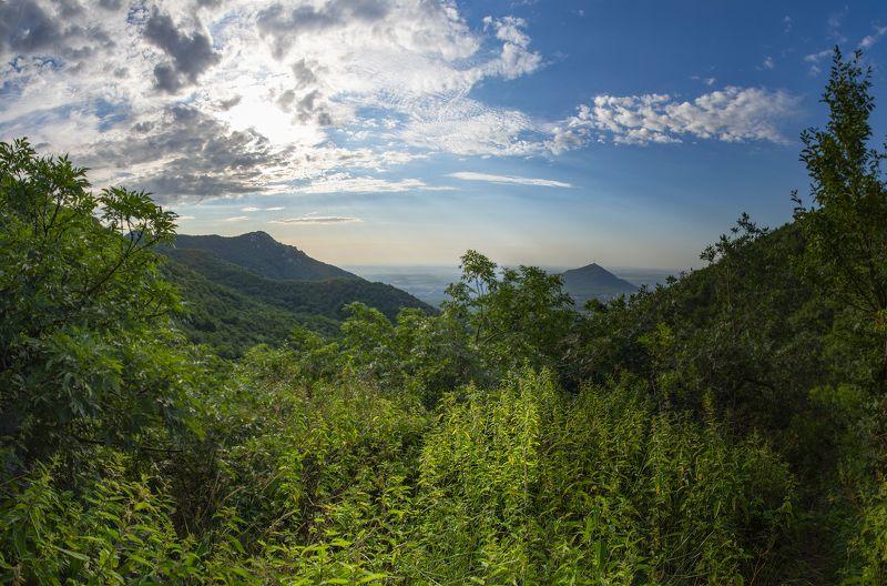 август,жара,крапива,кмв,пейзаж Жара и заросли крапивыphoto preview