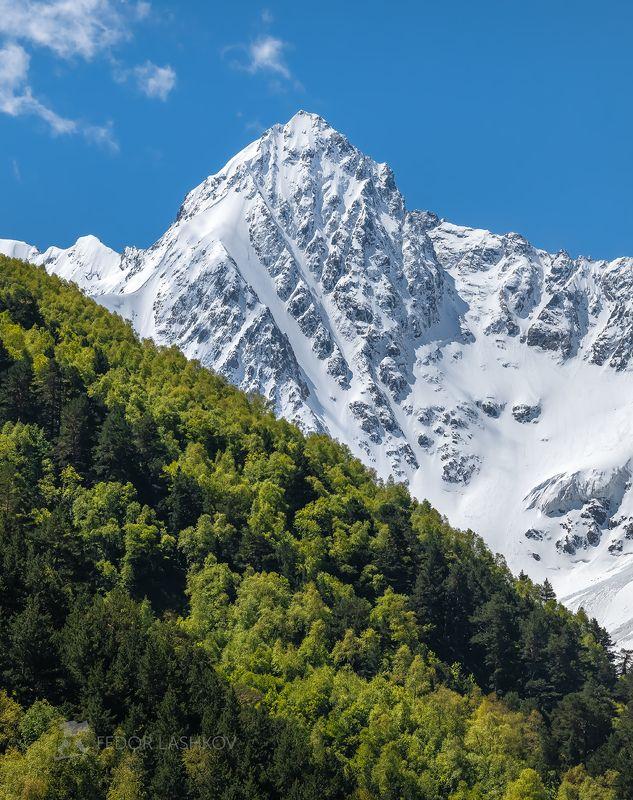 северный кавказ, горы, гора, вершина, путешествие, хребет, тихтенген, гара-аузусу, кабардино-балкарский высокогорный заповедник, весна, зелень, заснеженные вершины, днём, дневное, Весенняя зелень в горахphoto preview