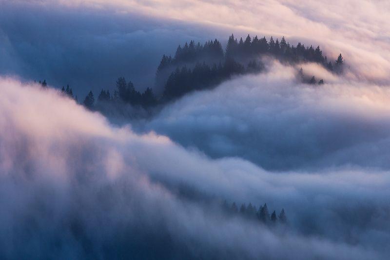 san francisco, karl the fog, sunrise, sunset Karl The Fog 2/5photo preview