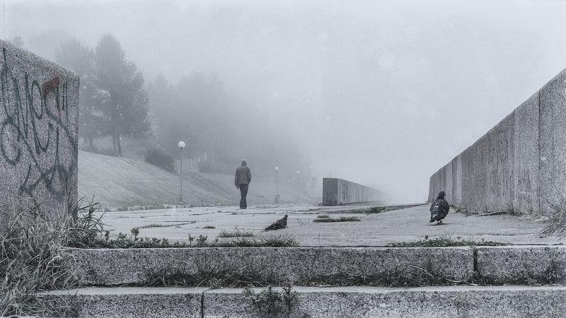 утро туман набережная Неслышным шагом уходя в туман...photo preview