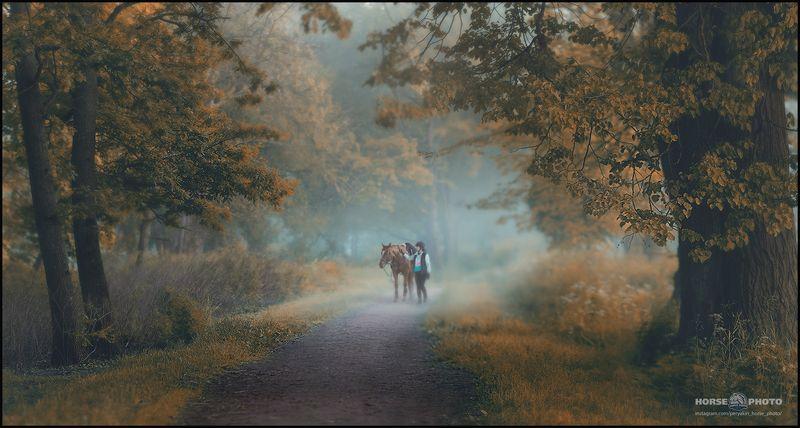 прогулка в лесу 2photo preview