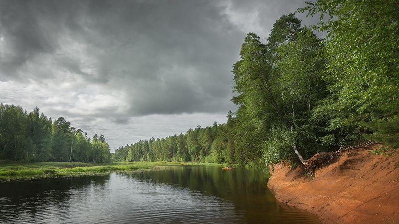 природа,красота,река,оредеж,сиверское,гармония река Оредежphoto preview