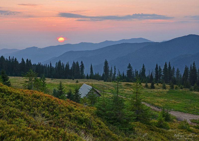 горы, мармаросы, карпаты, полонына струнге, закат, вечер, август На закате в горахphoto preview