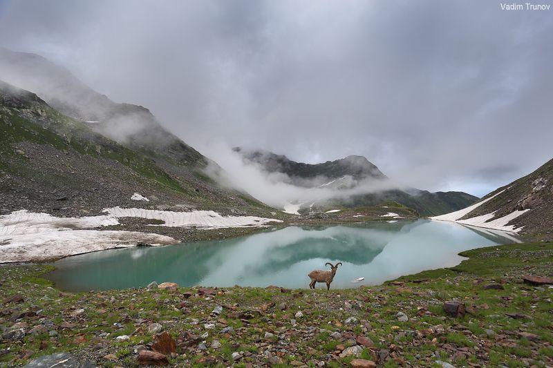 кавказ, кчр,  зелёные озёра Турье озероphoto preview