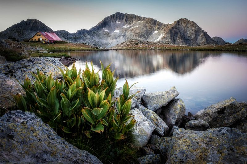 #landscape#nature#lake You and the morningphoto preview