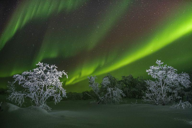 Ночь, Северное сияние, Кольский полуостров, полярная ночь Волшебство полярной ночиphoto preview
