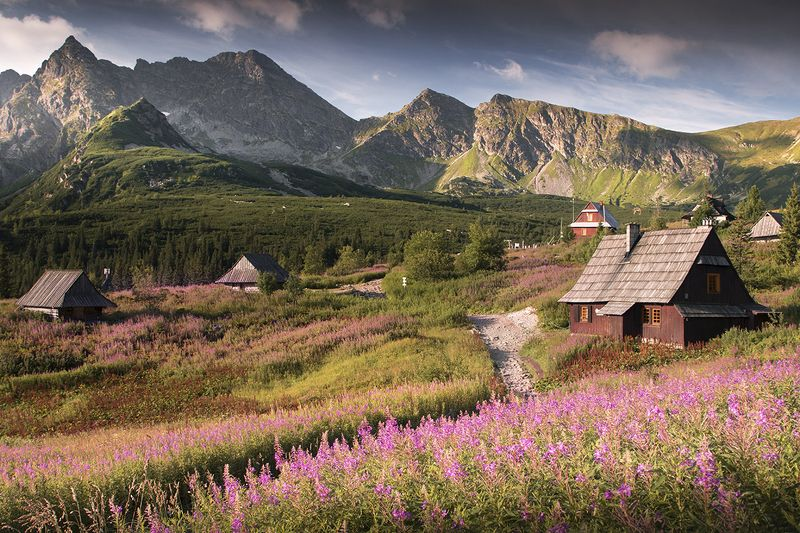 In the Tatra Mountainsphoto preview