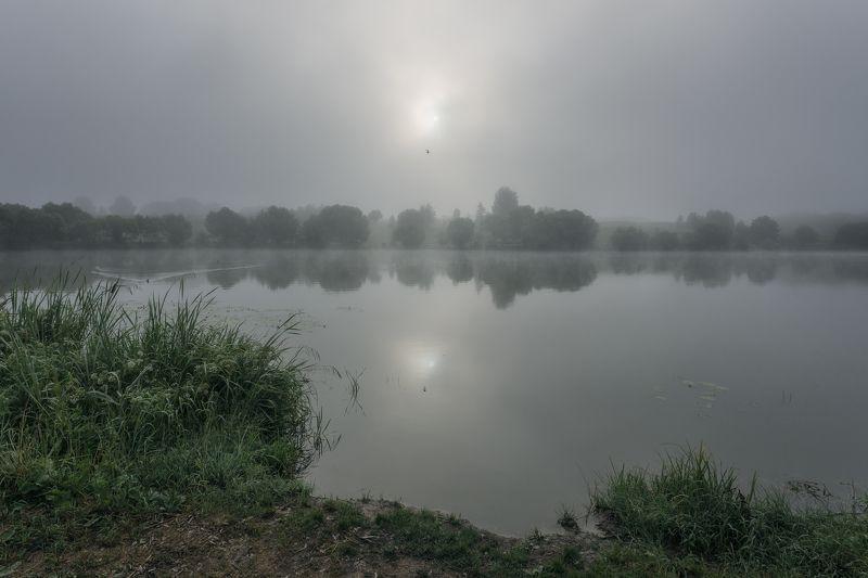 природа, туман, отражение, рассвет, пейзаж, Московская область Через туманphoto preview