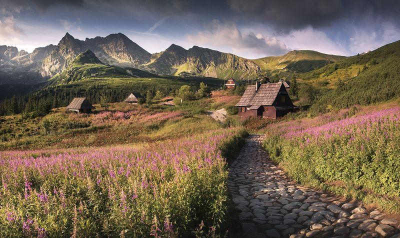 Tatra hallphoto preview
