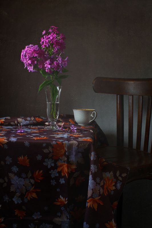натюрморт, флоксы, белая чашка *photo preview