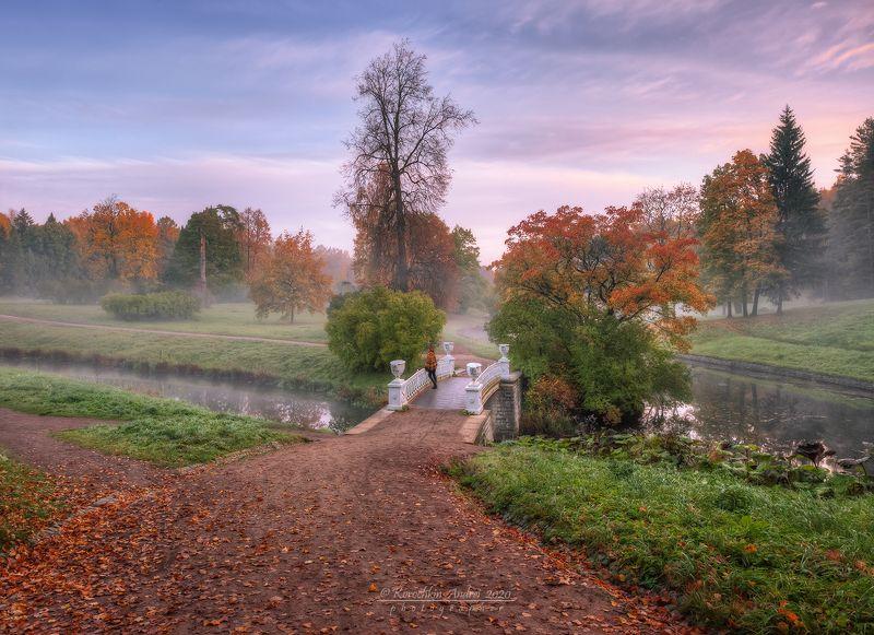 Осеннее утро Павловского парка...photo preview