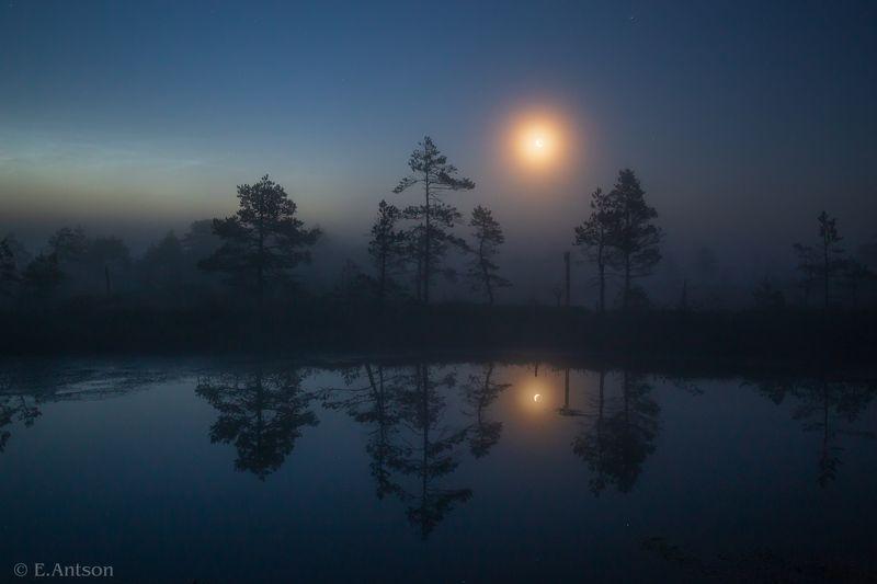 пейзаж, природа, ночь, болото, эстония Ночь на болоте фото превью
