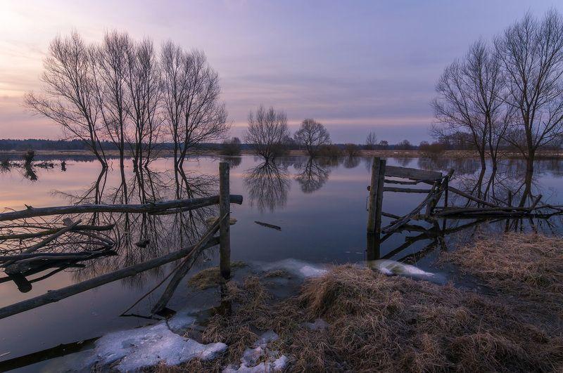 туман, московская область, утро, природа, пейзаж, весна, рассвет, солнце Половодье на р. Шернаphoto preview