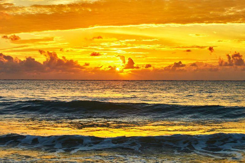 Золотое утро … Мексикаphoto preview