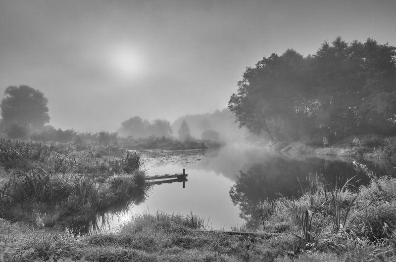 август, беларусь, лето, рассвет, река, рыбалка, туман, уса, утро О летней рыбалкеphoto preview